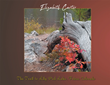 "Elizabeth Carter's Newly Released ""The Trail to Lily Pad Lake, Frisco, Colorado"" is a Stunning Volume of Nature Photography Celebrating God's Creation"