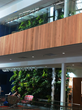 LiveWall Living Wall Graces the Atrium of the New Science and Technology Center at Cornerstone University