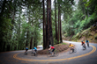 Backroads Celebrates National Bike Month with New Cycling Trips and a Pro Carbon Fleet Upgrade