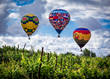 Southern California Wine Country's Biggest Party - The Temecula Valley Balloon & Wine Festival - Just Got Bigger!