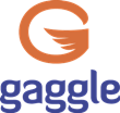 Gaggle Becomes a Google for Education Premier Partner