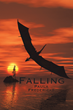 "Debut Fantasy Novel ""Falling"" by Paula Fredericks Begins With a Woman's Fall Off a Bridge and Landing on an Unseen Magical Island"