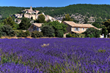 Discover Provence and the French Riviera with Odysseys Unlimited: New 12-day Small Group Tour Debuts April 6, 2020
