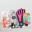Cattitude Box the Subscription Box for Crazy Cat Ladies launched in the UK