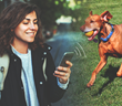 Trackimo Releases GPS Pet Tracker to Reduce the Amount of Missing Pets
