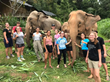 Adventures in Education Excellence: Scholarships, Thailand, and Elephants – Oh My!