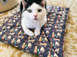 Introducing Triple T Studios' Sleepy Tiger Cat Mat; the Purrfect Place for Cat Naps to Satisfy the Big Cat in Your House Cat®