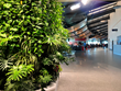 A close-up of the variety of tropical plants in the ATW Airport living wall.