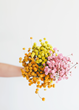 Afloral.com Launches Colorful Dried Flower Line to Introduce 2020 Trend