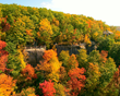 Fall in Love with the Allegheny National Forest Region