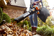 Skip the Rake and Consider Other Fall Cleanup Options Such As the New WORX TRIVAC Blower/Mulcher/Vac