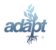 Adapt Recruits Veterans to Write the Next Era of Online Brand Strategy