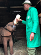 Author Rozanne Weissman adopts a baby orphaned elephant from David Sheldrick Wildlife Trust in Kenya.