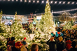 L.L.Bean Lights-Up the Holiday Season with Northern Lights Celebration