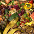 Anti-Food Waste Coalition Aims to Help Economy, Environment and the Hungry