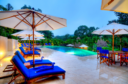 Chaise lounges, umbrellas and a pool surrounded by jungle at Chaa Creek, Belize