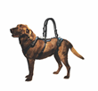 Blue Dog Designs Improves Design, Enhances Walking Accessories and Adds Rehabilitation Attachments to the Popular Help 'Em Up® Harness