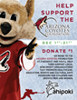 Ahipoki Partners with the Arizona Coyotes Foundation to Raise Money at all Arizona locations