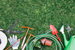 Joylore Releases New Research on the Best Gardening Tools in the Market