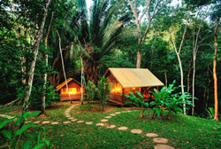 Two cabins surrounded by jungle at Chaa Creek's Belize Rainforest Retreat