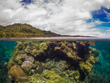 Ocean Ventures Fiji Launches Cutting-Edge Online Reef Ecology Course