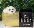 Dogphora® Launches New and Tail-Wagging E-Commerce Platform for Pets