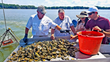 Maryland-led, Multi-institutional Research Team Receives $10M to Transform Shellfish Farming with Smart Technology