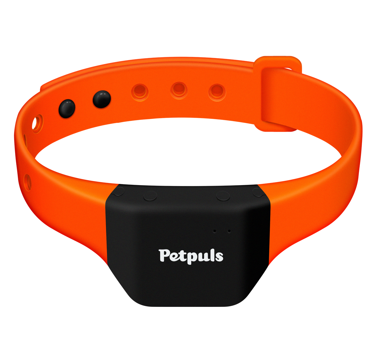 Introducing Petpuls  The Ai