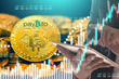 PayBito's Franchise Benefits Attract Entrepreneurs Globally