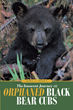 "Dawn L. Brown's newly released ""The Innocent Journey of Orphaned Black Bear Cubs"" shows the inspiring life of orphaned bears before their release into the wild"
