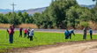California Farmworkers picking crops near Gilroy