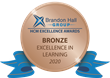 A visual of the Bronze Award medal logo
