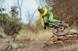Monster Energy's Troy Brosnan - Between the Races Video