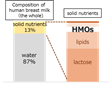 HMO composition of human breast milk