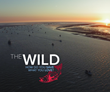 """PEBBLE MINE DEAD while the award winning film """"The Wild"""" goes the distance"""
