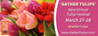 New Virtual Tulip Festival, 'Gather Tulips'. March 27-28th #GatherTulips