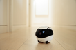 Enabot introduces EBO SE and EBO AIR, the next generation of social companion robots for the entire family