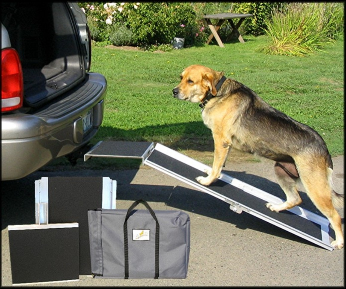 Trek Dog A New Concept In Vehicle Access Systems For Pets
