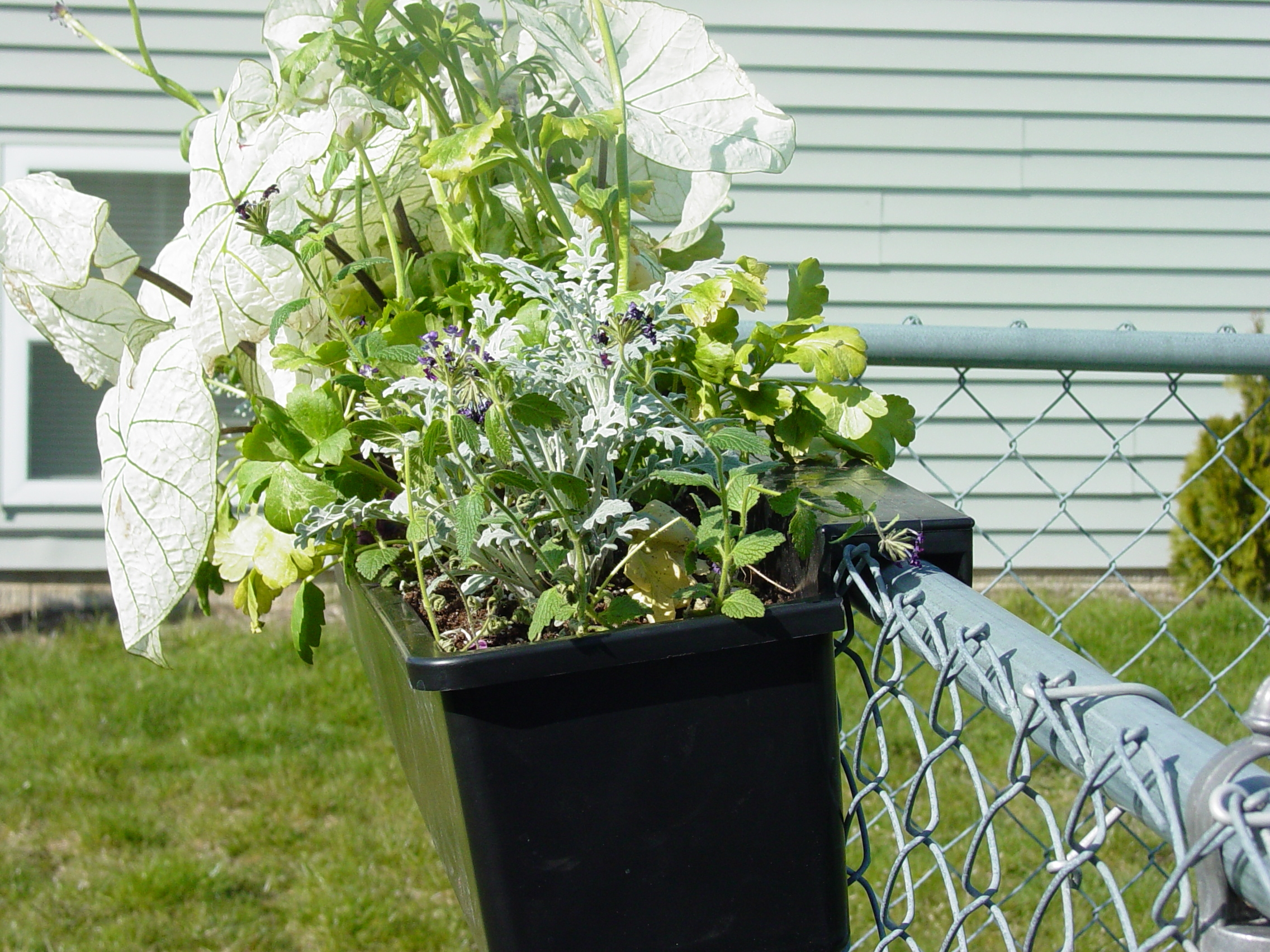 Our Hanging Planters Hang On Your Secure Structure This Is A Side View Of 36 Planter Chain Link Fence