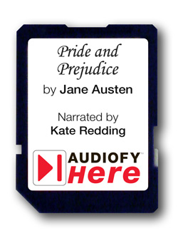 Audiofy Audiobook Chips (