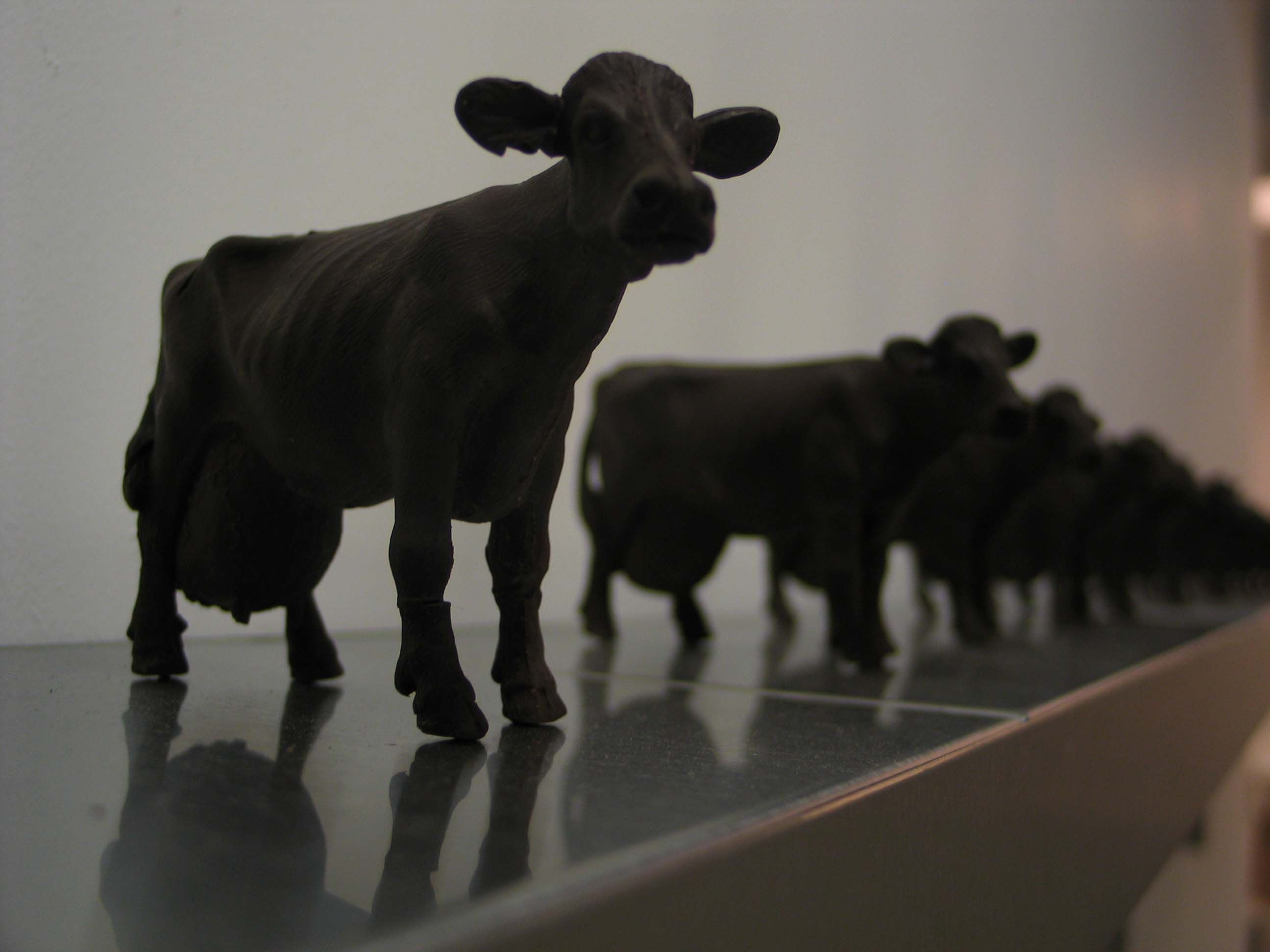 vegetarian artist to eat a whole cow for charity