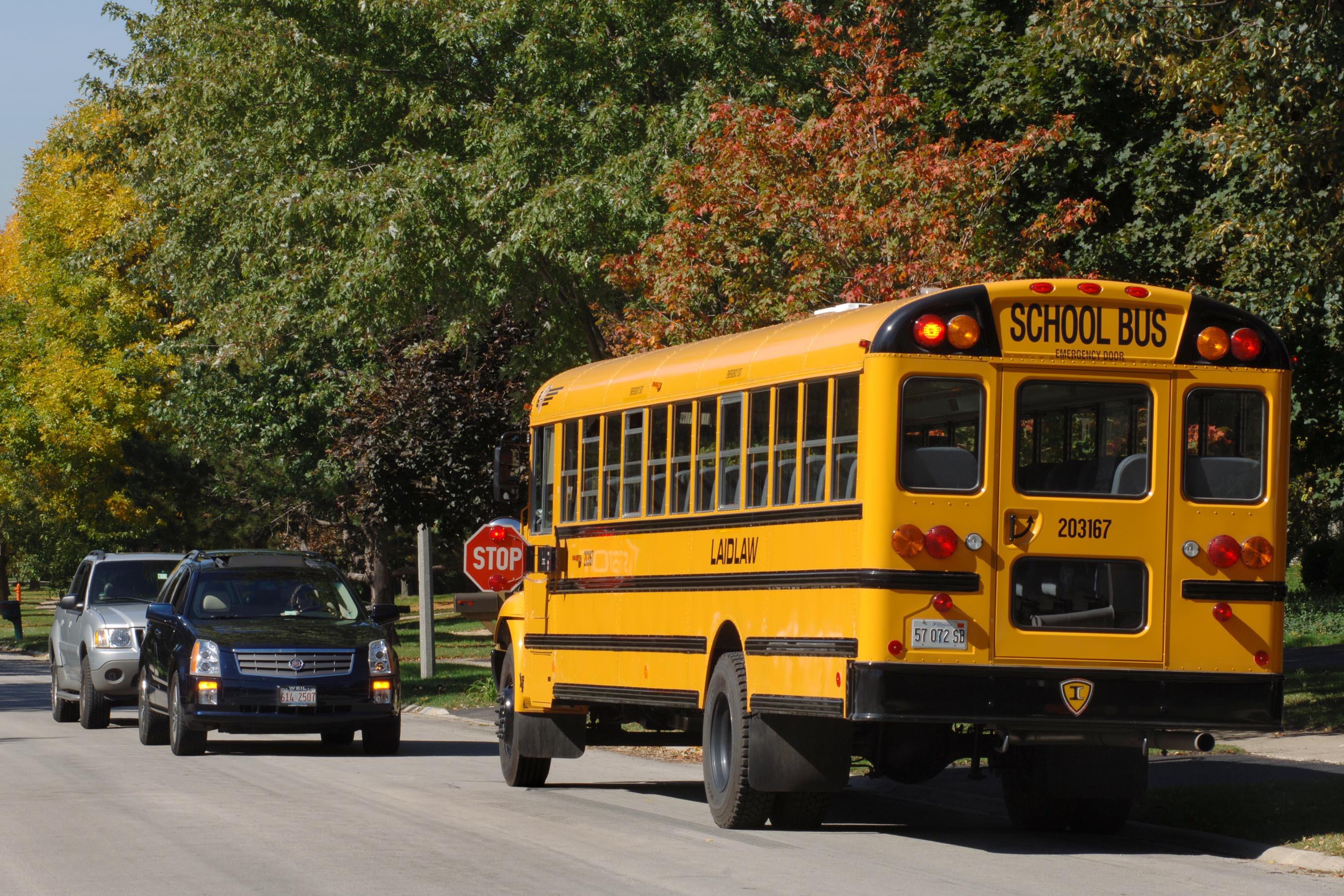 School bus safety