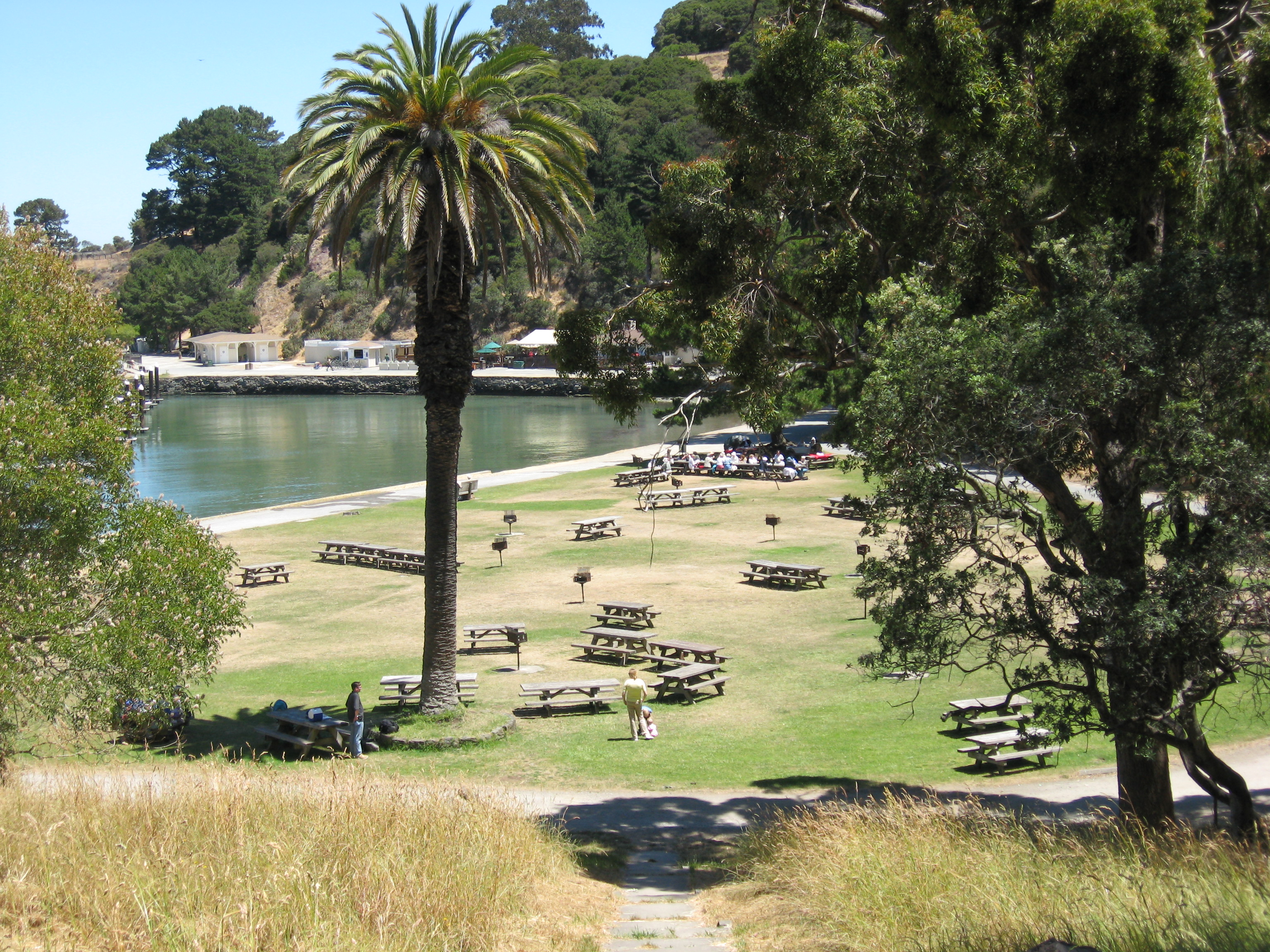 segway angel island partners with blue and gold fleet ferry, summer