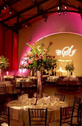 San Antonio Event Planner Launches All Inclusive Wedding Packages