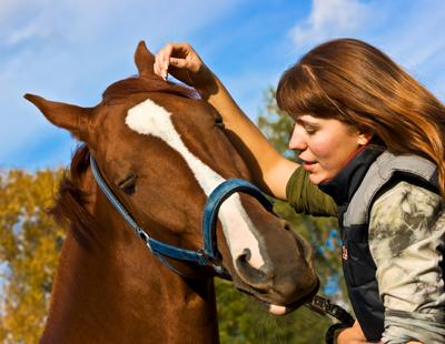 Equestriansingles com