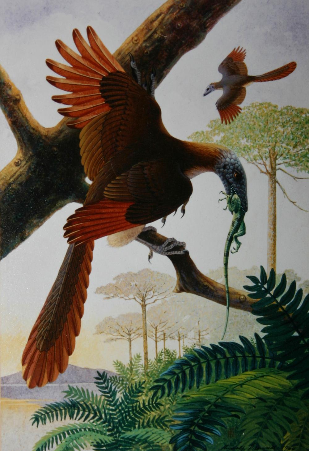Evolution Evidence Overturned