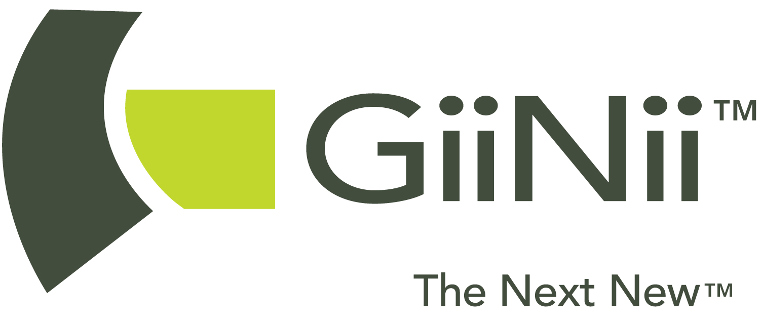 New From Giinii Exceptionally Easy To Use True Video Digital