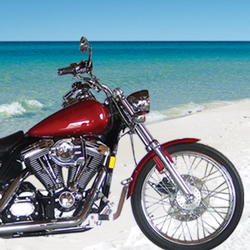Resortquest Welcomes The 2010 Florida Harley Davidson Hog Rally To