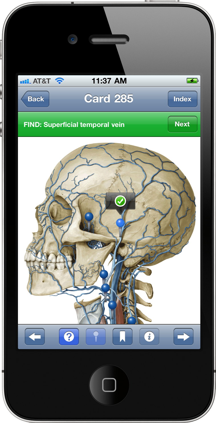 Modality and Thieme Medical Publishers Launch \'Anatomy on the Go ...