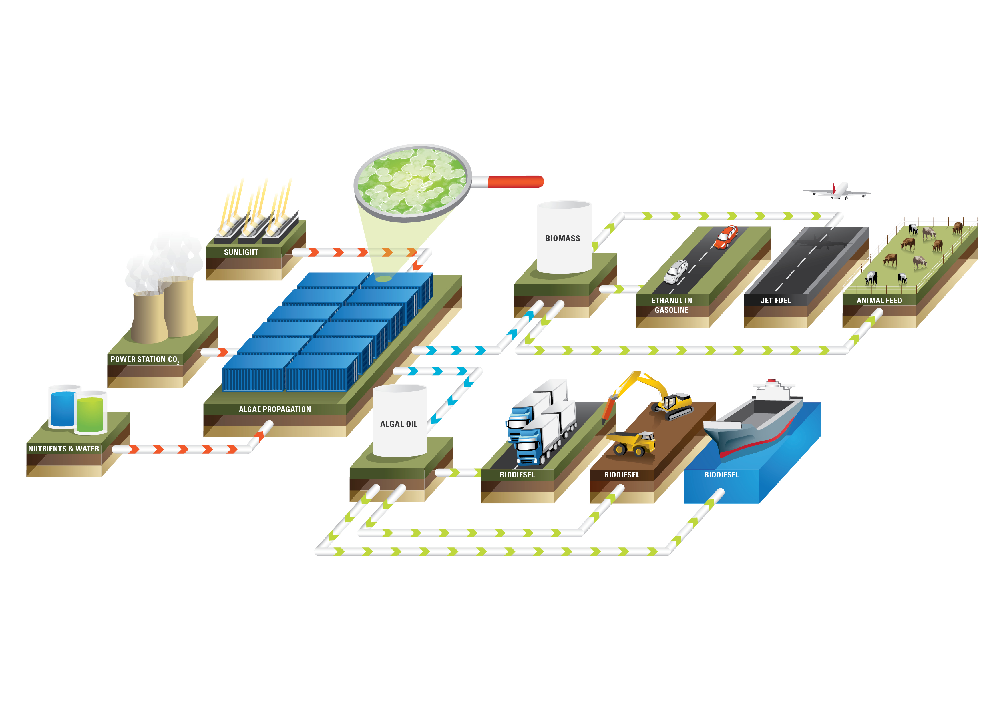 Advanced Biofuels Company Algae Tec Opens Atlanta Algae